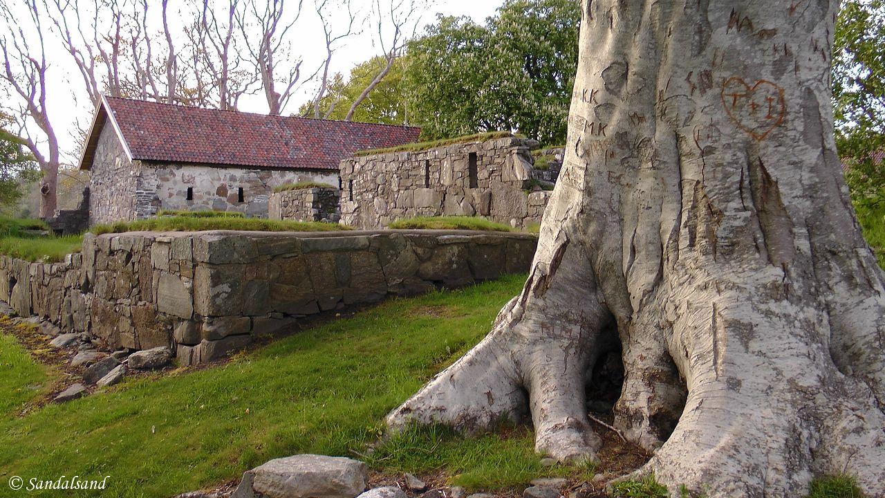 Norway - Hordaland - Kvinnherad - Halsnøy Abbey