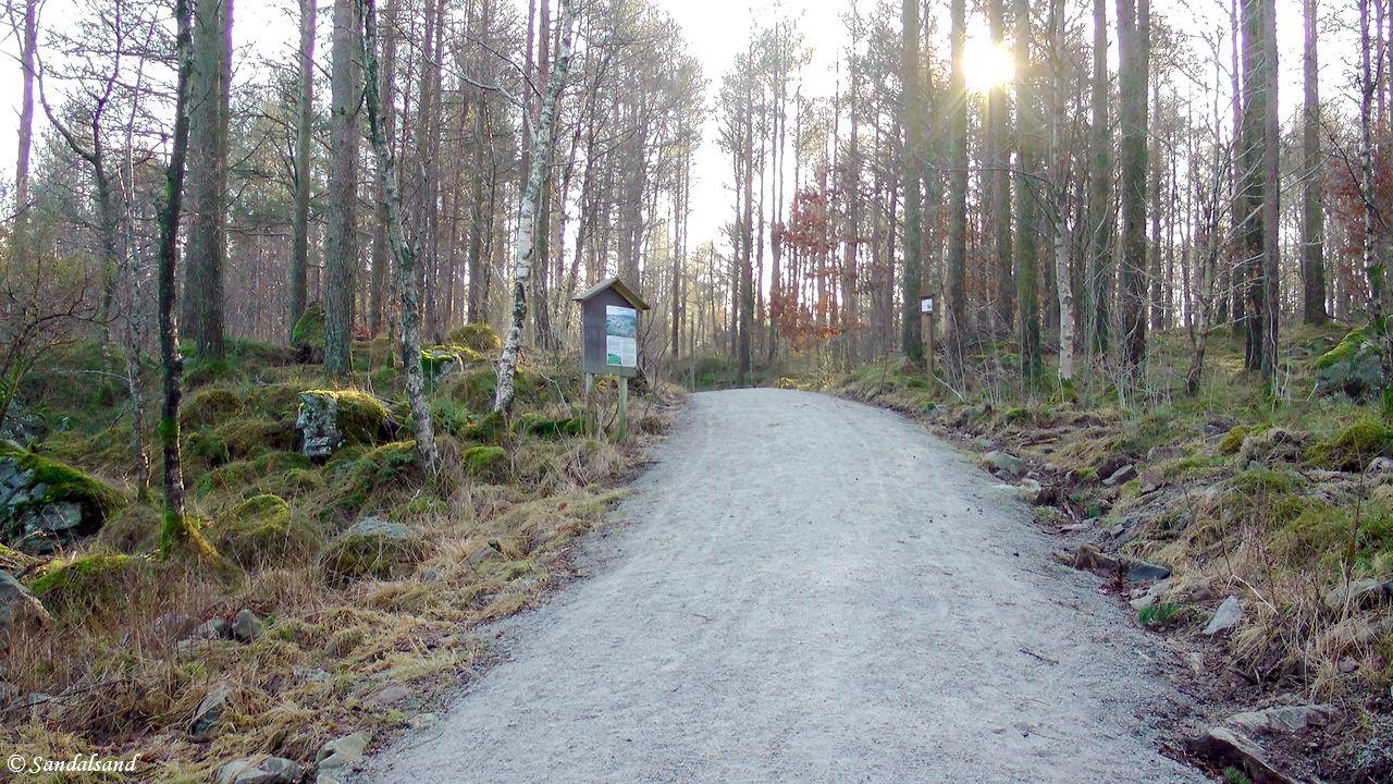 Rogaland - Sandnes - Kubbetjørn